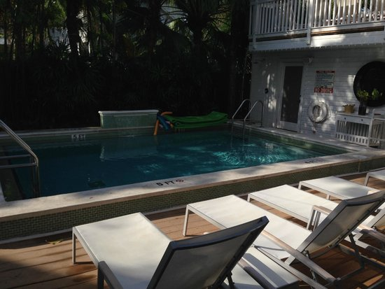 Alexander's Guesthouse: Pool