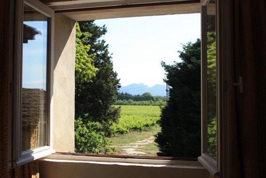 Mas du Clos de l'Escarrat : View from our bedroom