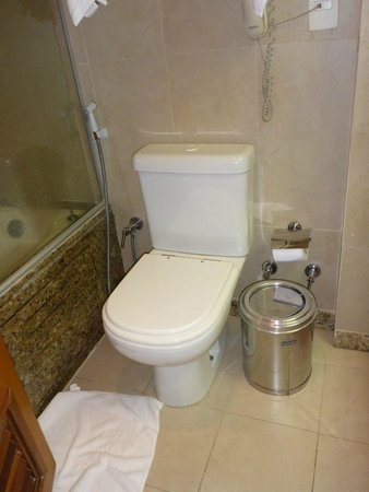 Hotel Marina Palace Rio Leblon: Bathroom