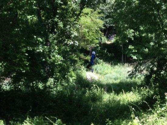 Big Bear Ziplines: More Ziplining...