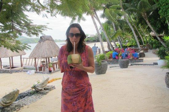 Turtle Island Resort: fresh coconut water every morning