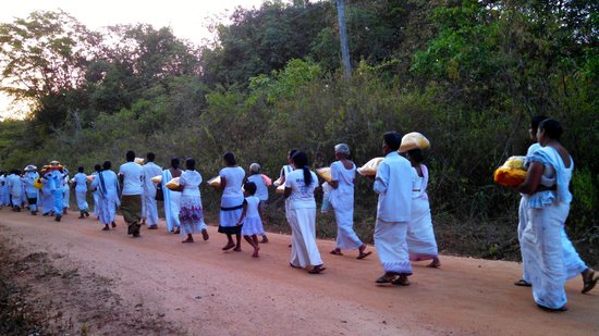 Back of Beyond - Pidurangala: Procession to the neighboring temple at the end of Poson Poya