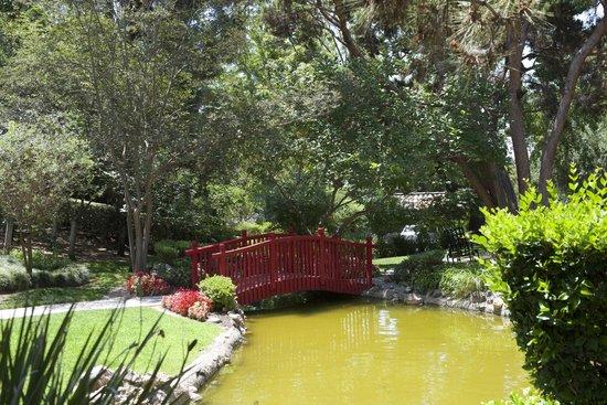 The Langham Huntington, Pasadena, Los Angeles: Garden