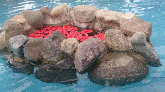 Uprising Beach Resort: Pretty flowers in the pool