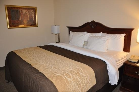 Comfort Inn & Suites : Very comfortable!