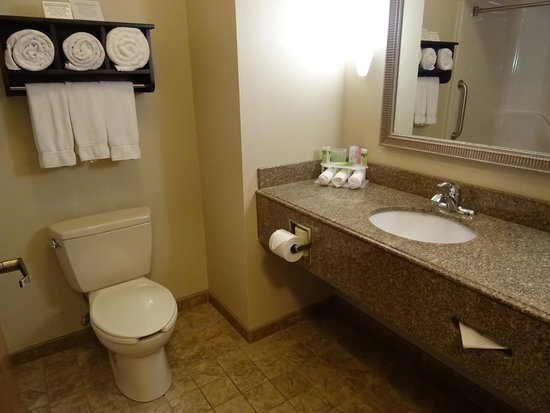 Bathroom In Room 115 Picture Of Holiday Inn Express Hotel Suites Dubois Dubois Tripadvisor