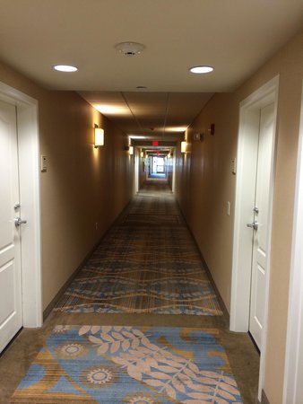 Homewood Suites by Hilton Wilmington/Mayfaire: Hall