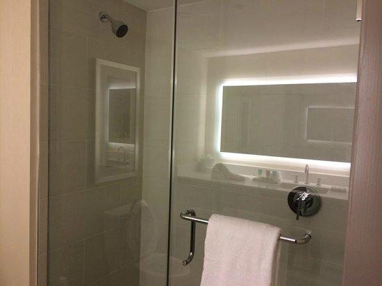 Hyatt Atlanta Midtown : Large Bathroom Shower
