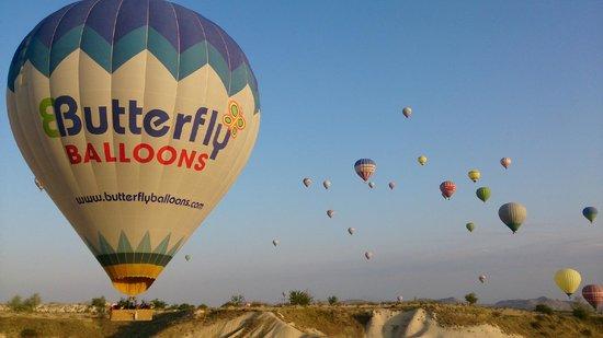 Butterfly Balloons : Cappadocia view