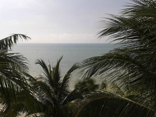 Beachfront Hotel La Palapa: vsita desde la terraza