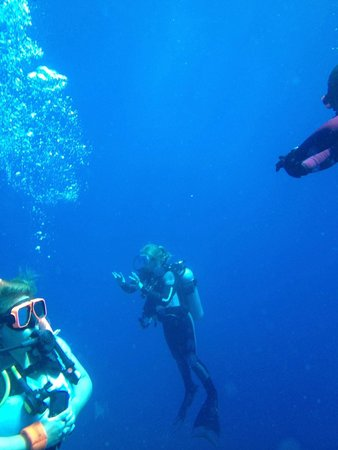 Beaches Ocho Rios Resort & Golf Club: Diving