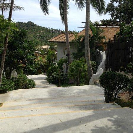 Panviman Resort - Koh Pha Ngan: Wege in der Anlage