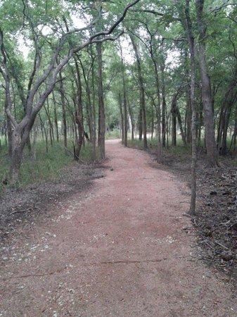 Palmetto State Park: Ottine swamp trail