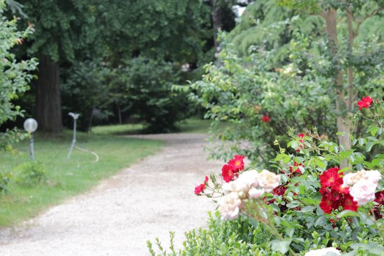 Alla Posta dei Donini: Le belle Rose