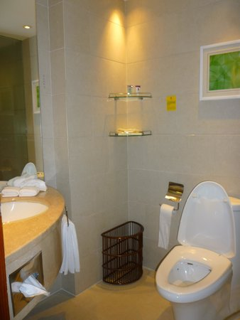 ZTL Hotel Shenzhen: the Bathroom
