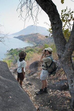 Pumulani: Nature walk