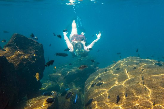 Pumulani: Snorkelling