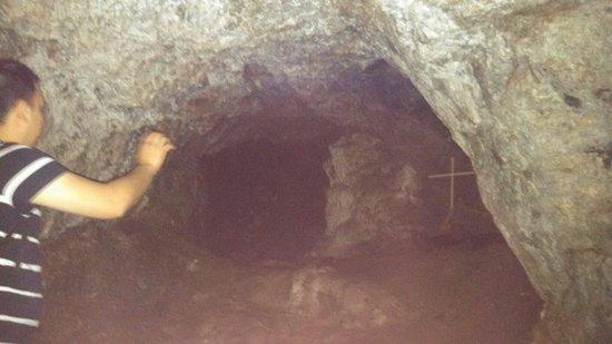 El Nopal Mine: Mina el nopal