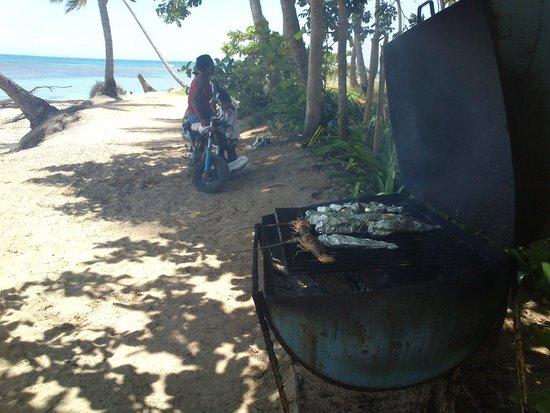 Playa Bonita: Pescado del dia :)
