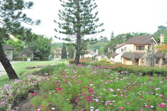 Imperial Phukaew Hill Resort: บริเวณบ้านพักส่วนอื่น