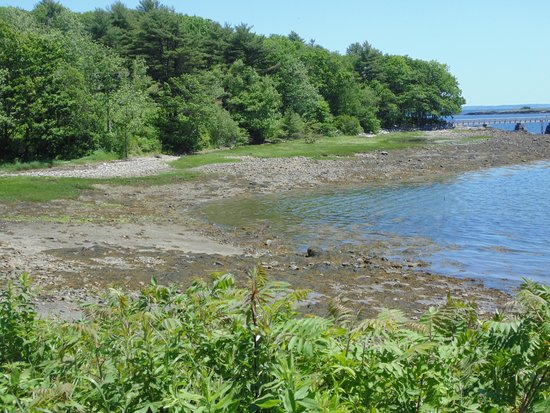 Island View Inn: Beach area