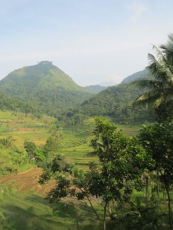 Villa Sumbing Indah : where we walked on our way to a temple
