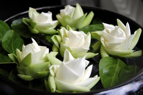 Shinta Mani Angkor: folded lotus flowers in the spa