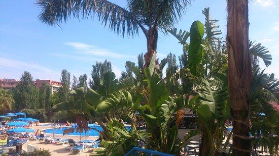 Sol Costa Daurada: Swimming pool :)