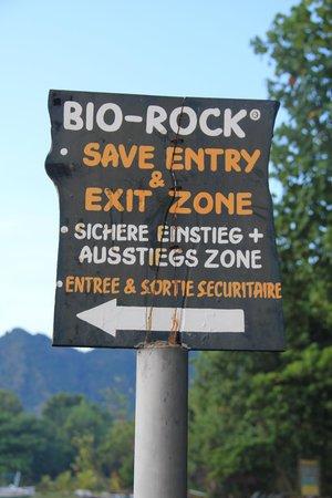 Biorock Pemuteran bali: That Way