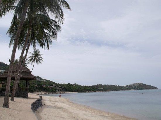 Nora Beach Resort and Spa: Beach