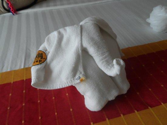 Buddy Lodge Hotel: Towels