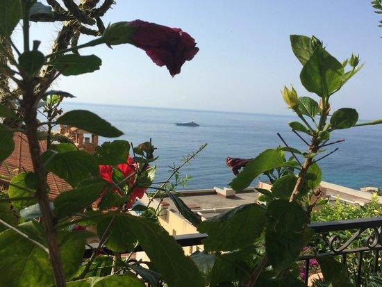 Hotel Regency: Vista dal giardino riservato alla colazione
