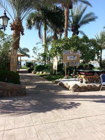 Hotel Novotel Sharm El Sheikh : On the way to the beach