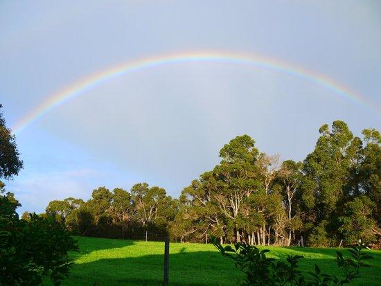 Wildwood Valley: Beautiful rainbow after the rain