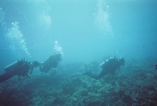 Hawaii Divers: Open water students