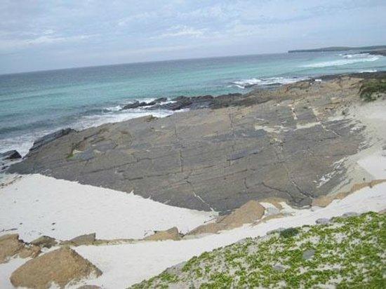 Links of Noltland: Westray Grobust beach pavement