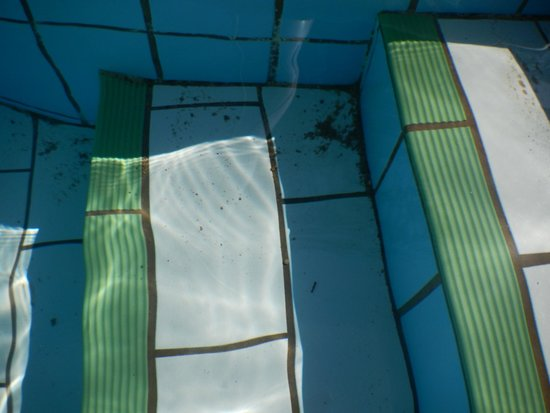 Solaris Hotel Niko: In 10 days of our vacation, even once no one clean the pool