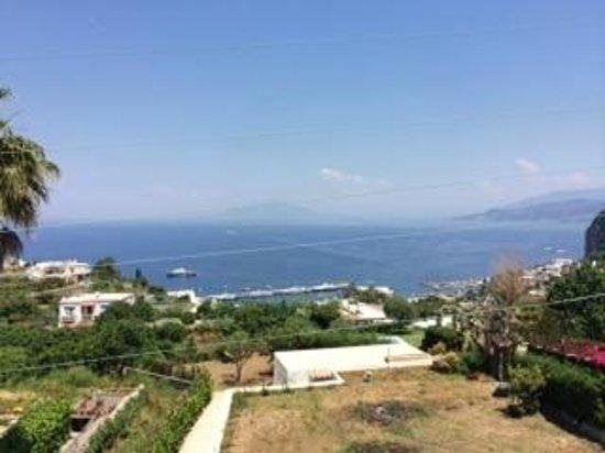 Capri Wine Hotel: View from room