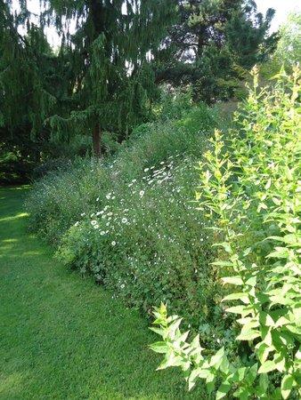 Jardin photo de la maison aux fleurs hernicourt for Jardin aux fleurs
