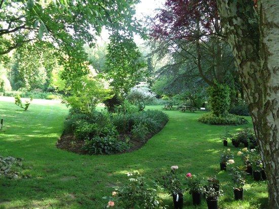 Jardin picture of la maison aux fleurs hernicourt for Hotel jardin de fleurs kyoto