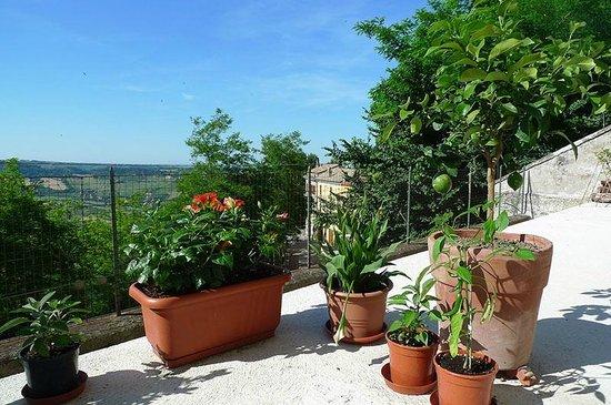 Il Colle Bed & Breakfast: terrazzo