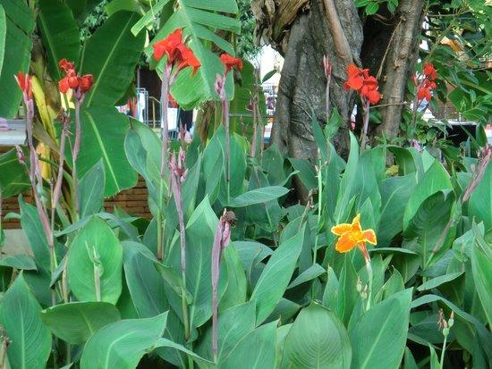 Khum Phaya Resort & Spa, Centara Boutique Collection: 6
