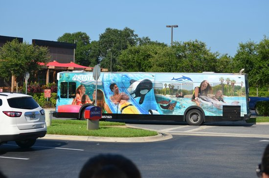 SpringHill Suites Orlando at SeaWorld®: Shuttle bus