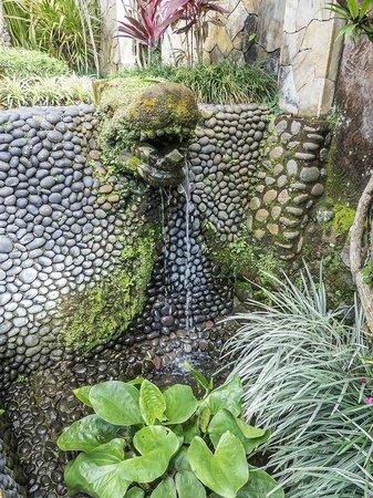 Samhita Garden: fuente del jardín