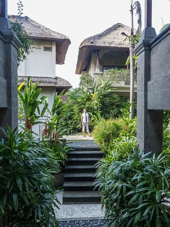 Samhita Garden: pasillos y jardin