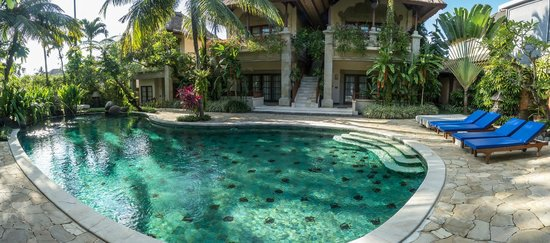 Samhita Garden: piscina
