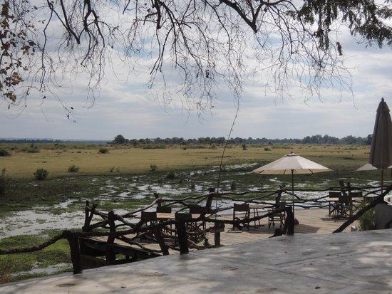 Kafunta River Lodge: the waterhole