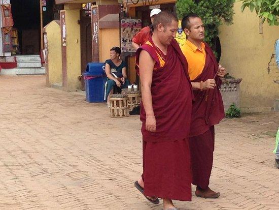 Stûpa de Bodnath : The monks