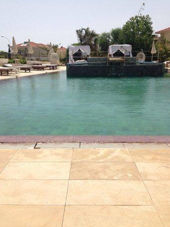E Hotel Spa & Resort Cyprus: Gorgeous pool