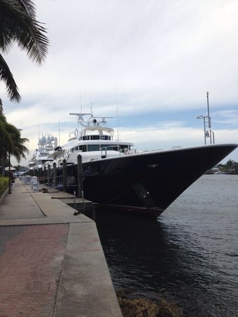 Hilton Fort Lauderdale Marina: Nice boats moored up